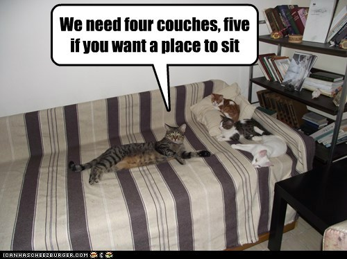 We need four couches, five if you want a place to sit