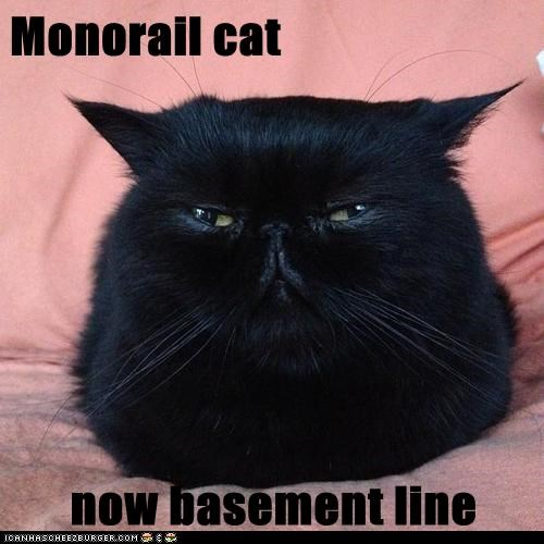 Monorail cat  now basement line