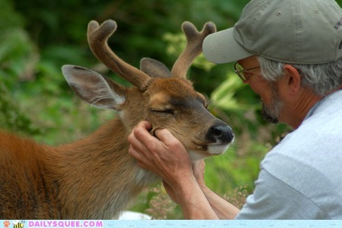 Sitka-White-Tailed Deer and his friend. He smiles!!!!