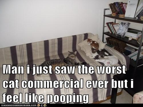 Man i just saw the worst cat commercial ever but i feel like pooping