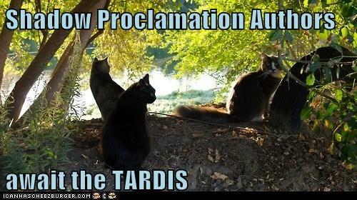 Shadow Proclamation Authors  await the TARDIS