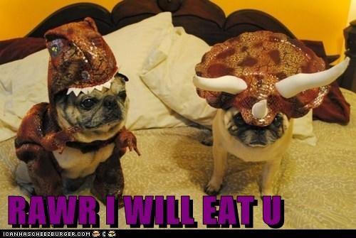 RAWR I WILL EAT U