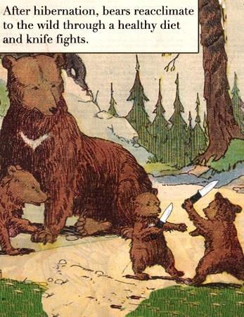 bears,healthy diet,hibernation,id-believe-it,knife fights