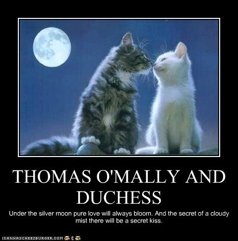 THOMAS O'MALLY AND DUCHESS