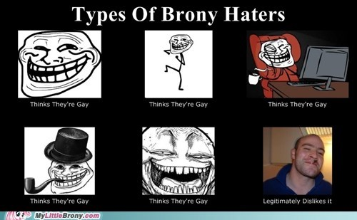 Types of Brony Haters