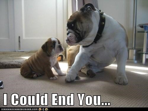 I Could End You...