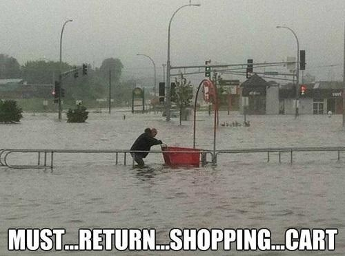 cart,flood,good samaritan,saddest story,shopping