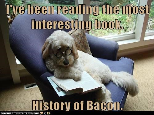 I've been reading the most interesting book.   History of Bacon.