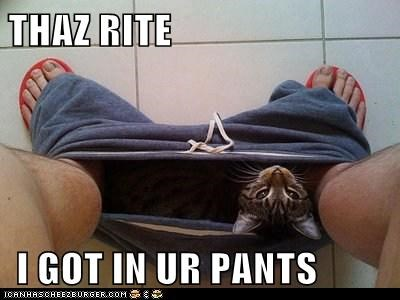 THAZ RITE   I GOT IN UR PANTS