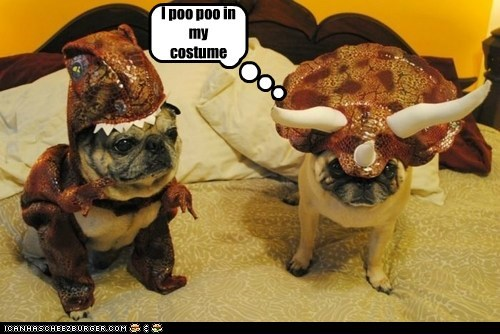I poo poo in my costume