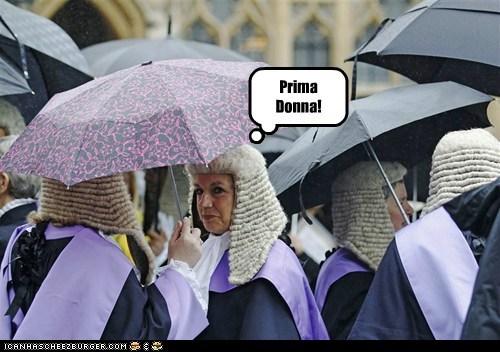 prima donna,judges,united kingdom,wig,umbrella,catty,insult