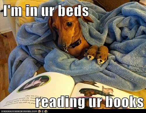 I'm in ur beds  reading ur books