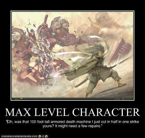 MAX LEVEL CHARACTER
