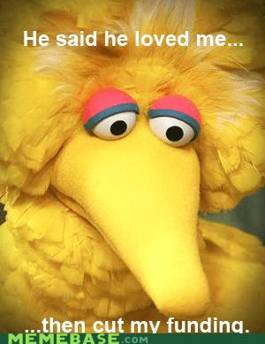 bid bird,Debates,funding,love