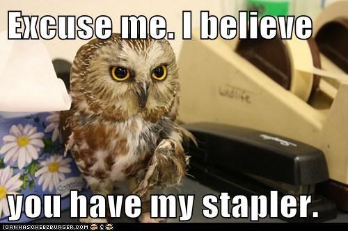 excuse me,Office Space,Owl,stapler,swingline