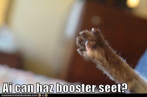 Ai can haz booster seet?