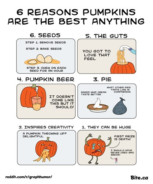 6 Reasons Pumpkins are the Best Anything