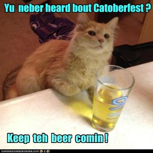 Yu  neber heard bout Catoberfest ?