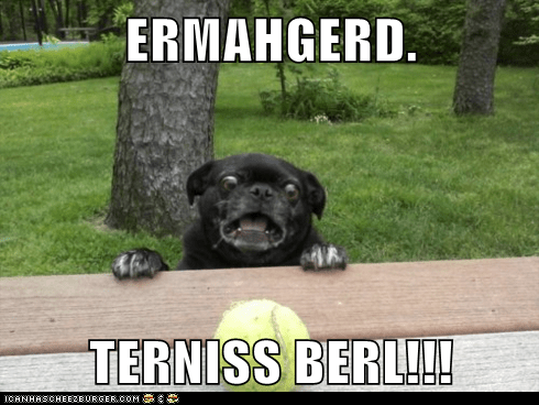 ERMAHGERD.  TERNISS BERL!!!