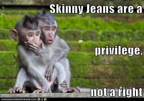 shock,monkeys,right,gross,skinny jeans,privilege