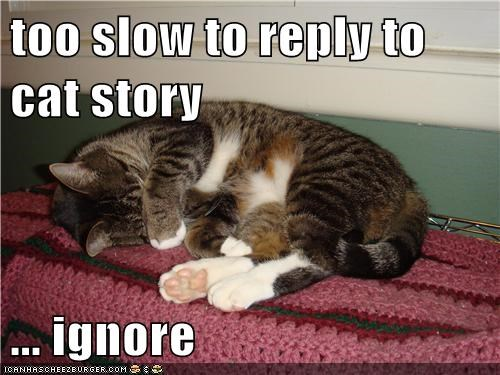too slow to reply to cat story  ... ignore