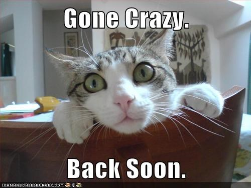 gone,crazy,be back soon,brb,Cats,captions,categoryimage