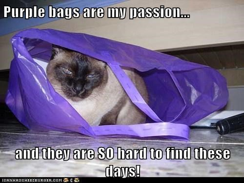Purple bags are my passion...  and they are SO hard to find these days!