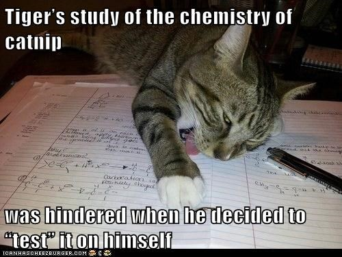 "Tiger's study of the chemistry of catnip  was hindered when he decided to ""test"" it on himself"