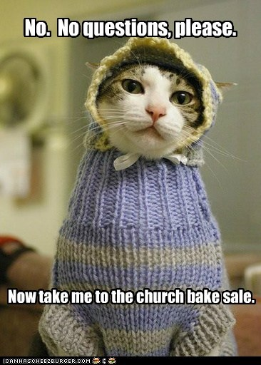 demands,church bake sale,sweater,church lady,bake sale,Cats,captions
