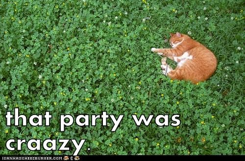 that party was craazy.