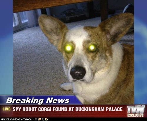 Breaking News - SPY ROBOT CORGI FOUND AT BUCKINGHAM PALACE