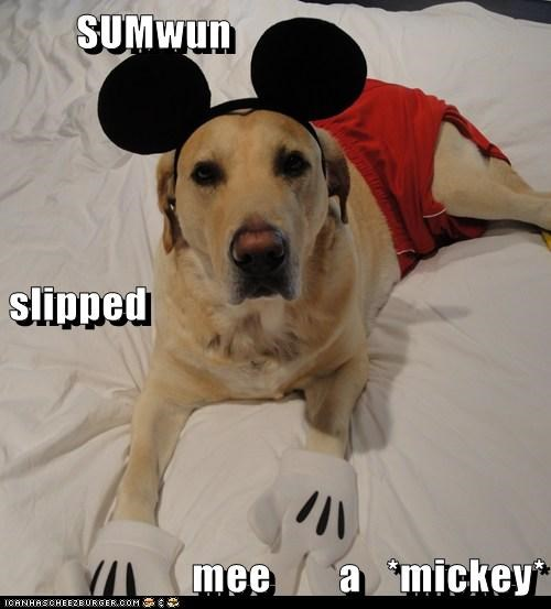 SUMwun slipped    mee        a   *mickey*