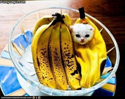I are a Banana