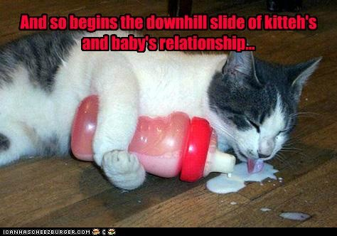 And so begins the downhill slide of kitteh's and baby's relationship...