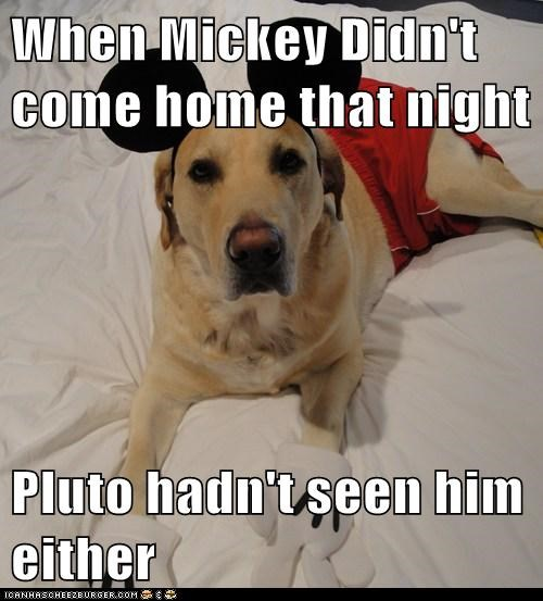 When Mickey Didn't come home that night  Pluto hadn't seen him either