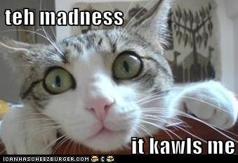 teh madness  it kawls me