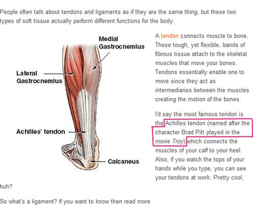 technically correct,achilles tendon,brad pitt,troy,anatomy