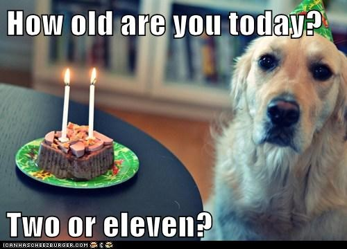 How old are you today?  Two or eleven?