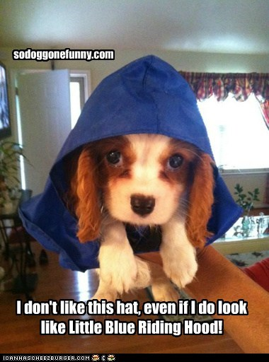 I don't like this hat, even if I do look like Little Blue Riding Hood!