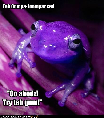gum,oompa loompa,purple,go ahead,trick,frog