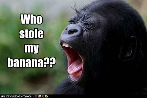 Who  stole my banana??