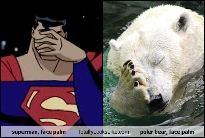 superman, face palm Totally Looks Like poler bear, face palm
