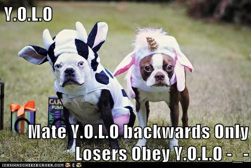 Y.O.L.O  Mate Y.O.L.O backwards Only Losers Obey Y.O.L.O -_-