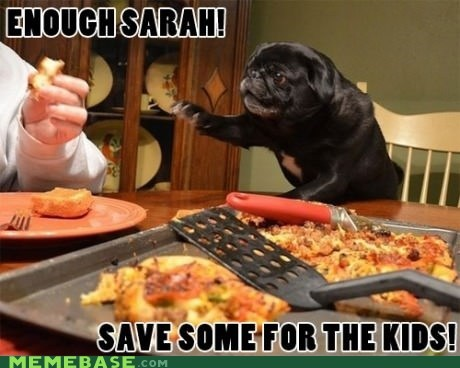 nibble,kids,dogs,sarah,pizza