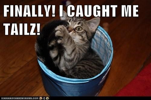 FINALLY! I CAUGHT ME TAILZ!