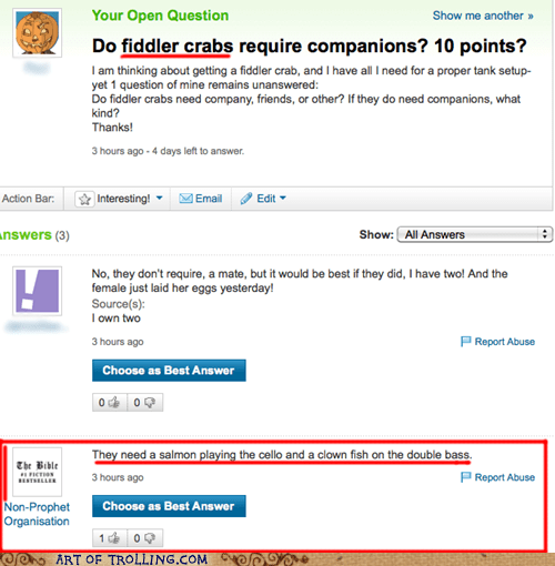 yahoo answers,crabs,puns,sea creatures