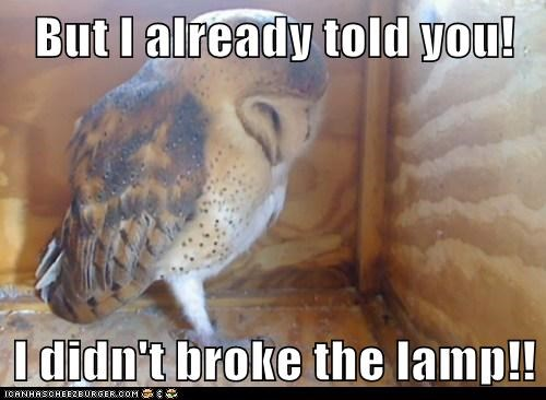 But I already told you!  I didn't broke the lamp!!