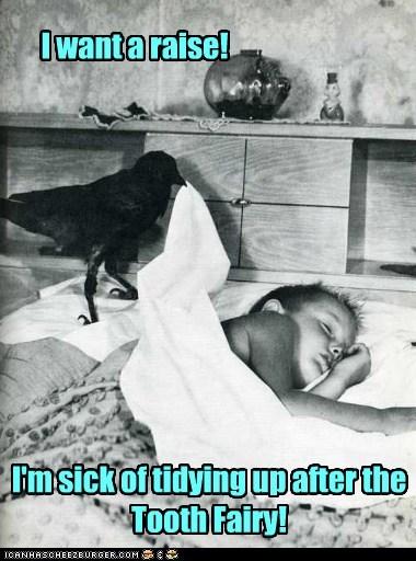 crow,kid,tooth fairy,raise,union,bed