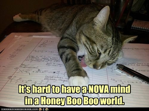 It's hard to have a NOVA mind...