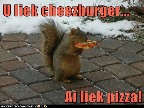 U liek cheezburger...  Ai liek pizza!